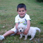 Niño con Golden Retriever Punta Serenin