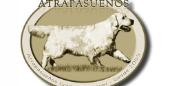 Atrapasueños Golde Retriever